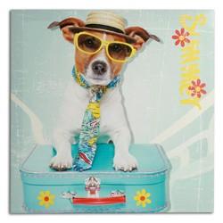 Cuadro Perro con Maleta 40 x 40 - Imagen 1