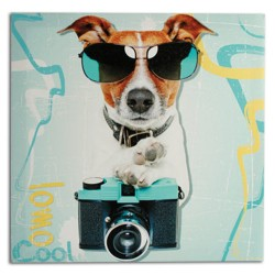 Cuadro Perro Fotógrafo 40 x 40